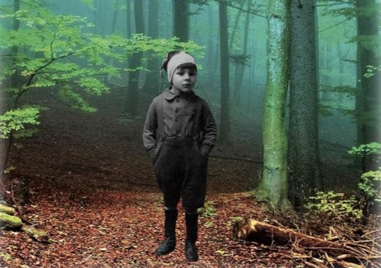 « Silences en forêt », un livre au boisdormant…